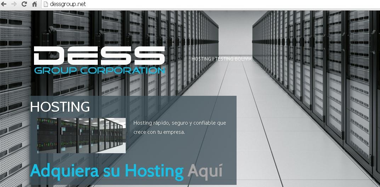Dess Group Partner